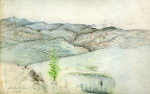 edgar drawings of trail